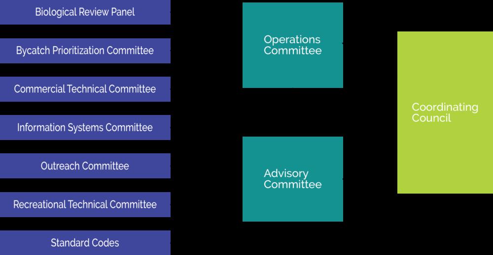 ACCSP Organization Chart copy_lrgr